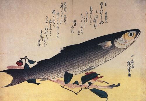 Hiroshige le poisson qui s'envole.jpg