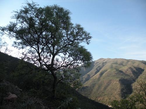 Sierra Cordoba ascension uritorco 8h.JPG