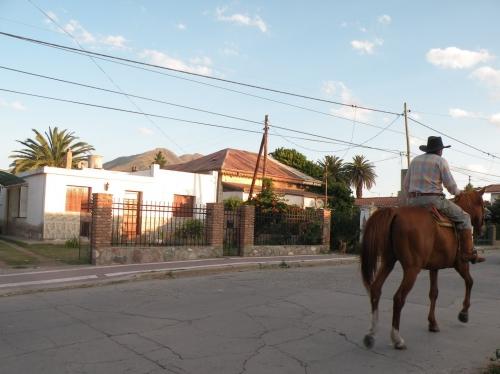 Un cheval passe Capilla.JPG