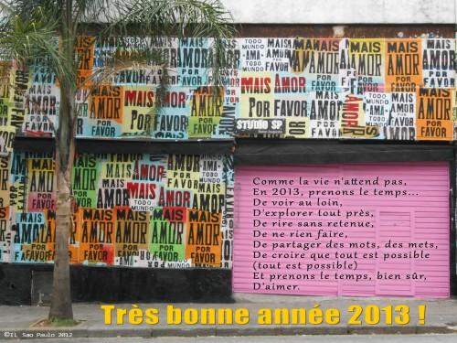 mais amor 2013 frances.jpg